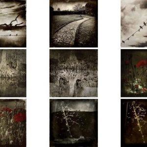 paintings / tableau